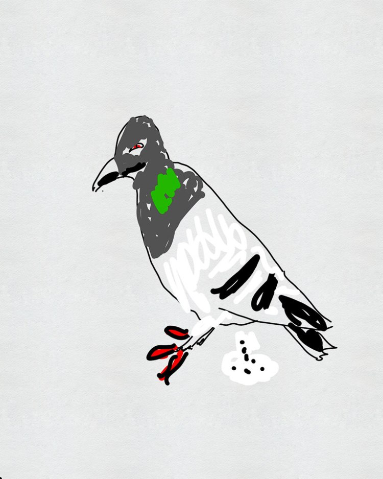Medical Fun Facts Ep 76 Cryptococcus | A defecating pigeon Gary Lum