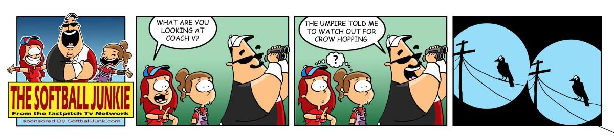 Softball Junkie 1