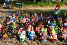Gnomes at Floriade. Don't they look happy? | SONY ILCE-7S with FE 55mm F1.8 ZA at 55mm and f/4, 1/5000sec, ISO 400