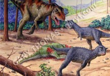 Giganotosaurus & Carnotaurus