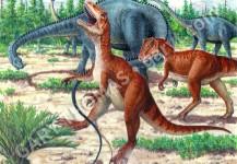Diplodocus & Allosaurus