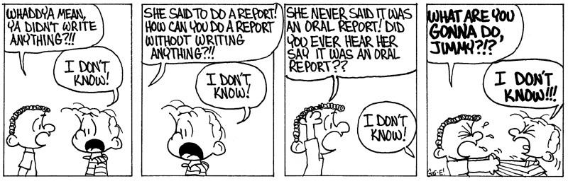Zucchini Report 6