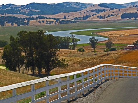 Petaluma River view