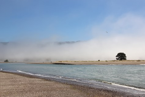 Along the mouth of the Bolinas Lagoon