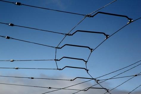 Muni lines