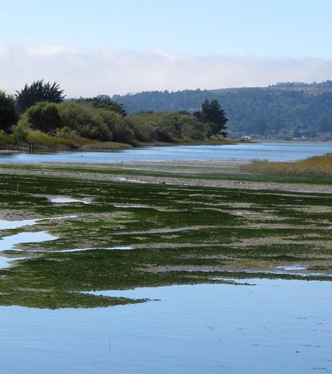 Western Marin coast