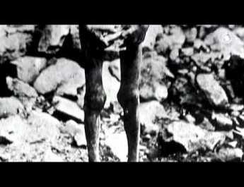 """Gas-Tube: La Germania riconosce il genocidio degli armeni, Serj Tankian-""""Yes, it's Genocide"""""""