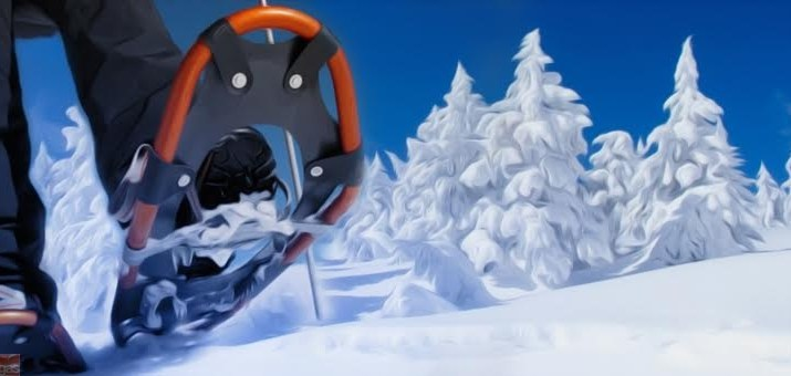 Vacanze Neve