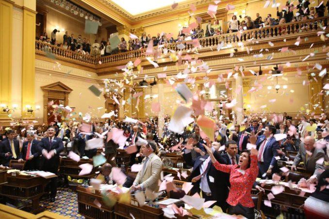 Image result for georgia legislature