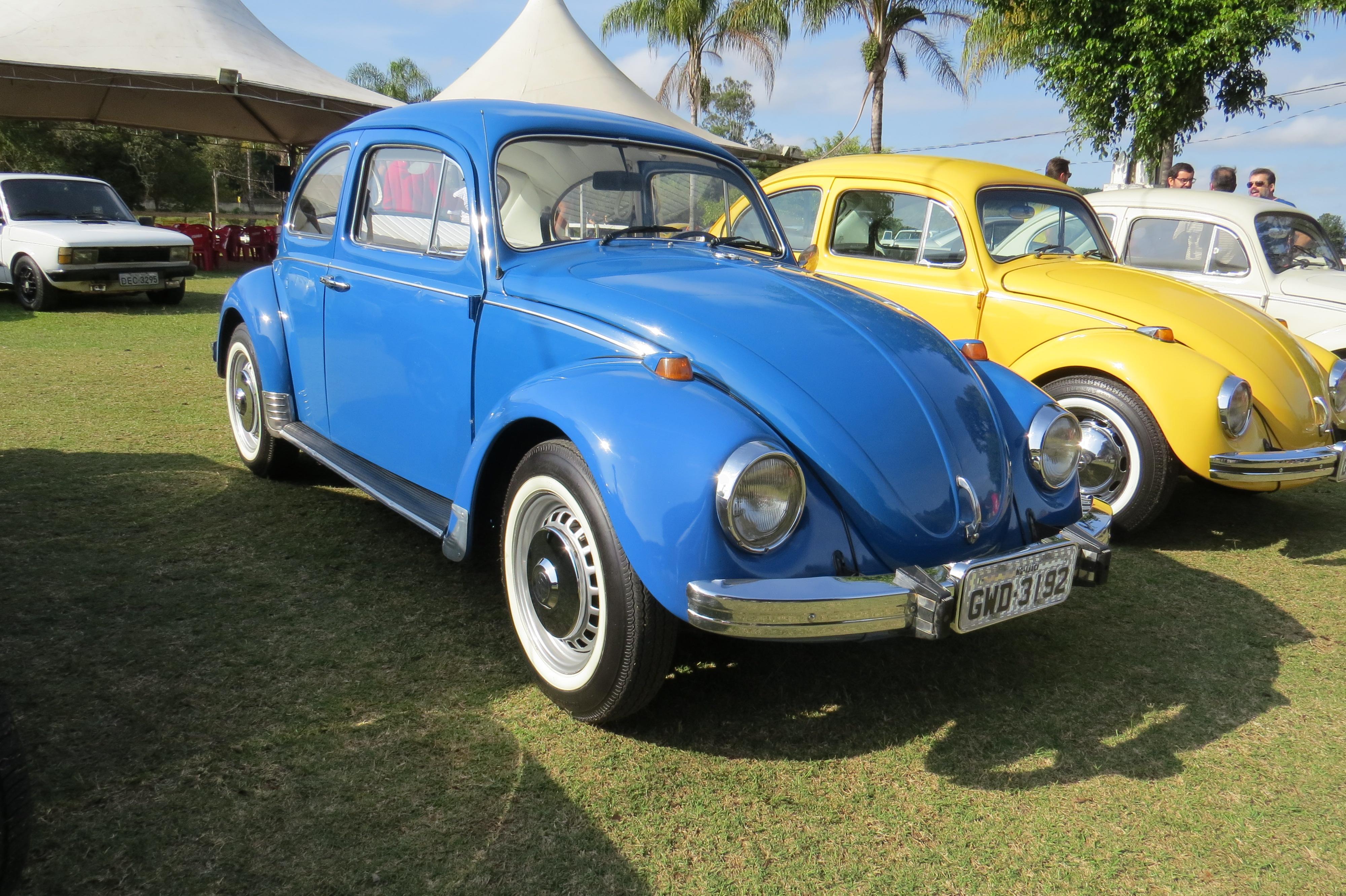 IMG 4872 - 3º Grande Encontro dos Carros Antigos do Sul de Minas