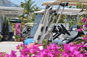 Cruise like a local.. Golf carting is #7 on our top 10 things to do on Boca Grande.