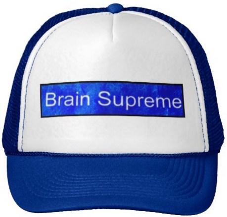 brain_supreme_trucker_hat-ra58bd6c3688947518a2caf0951c31f60_v9wzw_8byvr_512