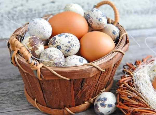 Метод доктора Капустина - инъекции куриным яйцом - Золотые рецепты ЗОЖ - Архив Вестника ЗОЖ