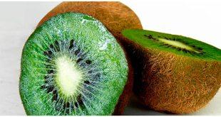 Kiwi, la brillante fruta verde que nos llena de salud