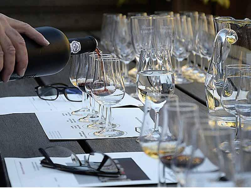 Como trabajar en el mundo del vino catas