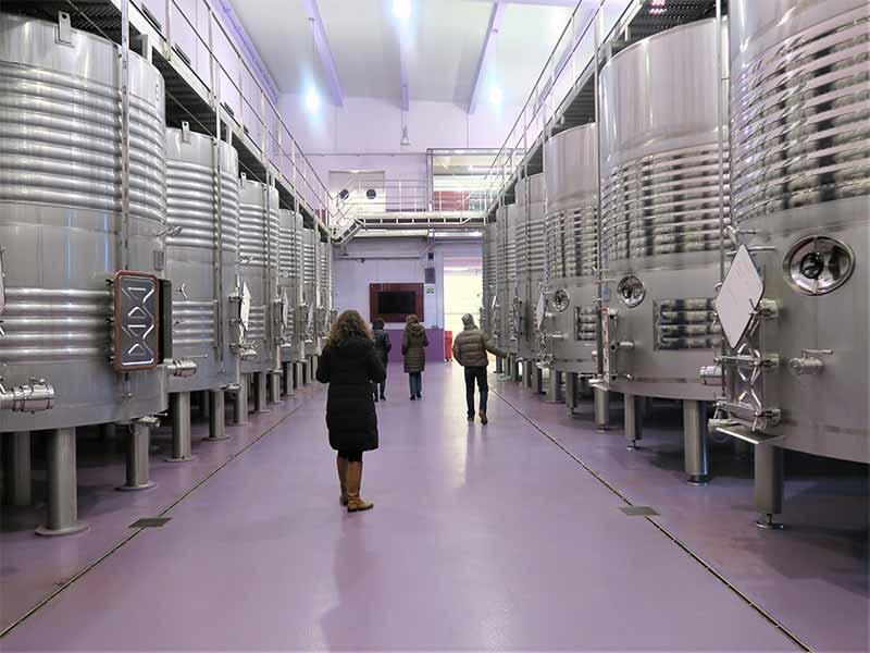 Sala de Fermentación Nexus