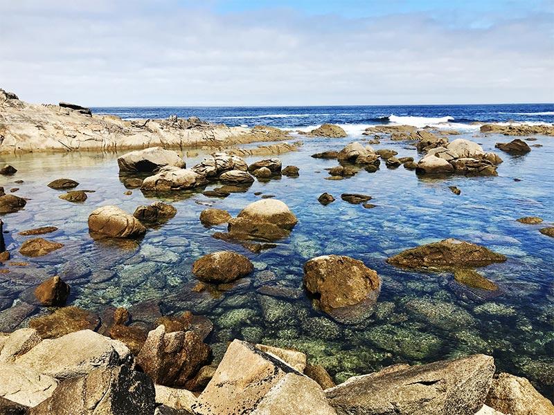 Islas Cies Pontevedra Acuario natural