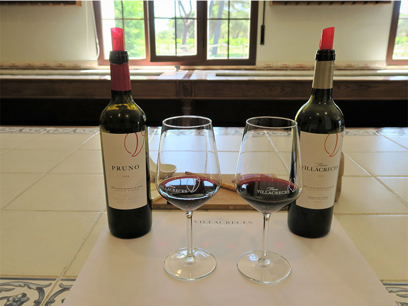 Cata de vinos Pruno y de Finca Villacreces