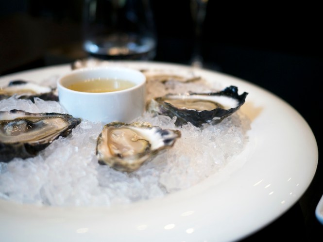 oysters-sepia