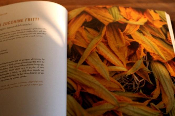 Zucchine Fritti...