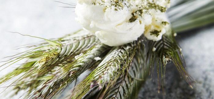 Thorsten Schmidts Iskold popkorn af umodne kornplanter