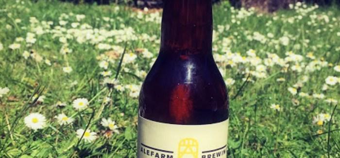 Beertenderens øl-anbefalinger: Juli