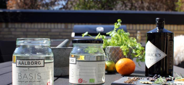 Genialt: Lav din egen Gin – så nemt er det