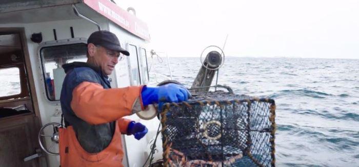 REJSEGUIDE: Ta' med på fisketur efter verdens bedste jomfruhummere