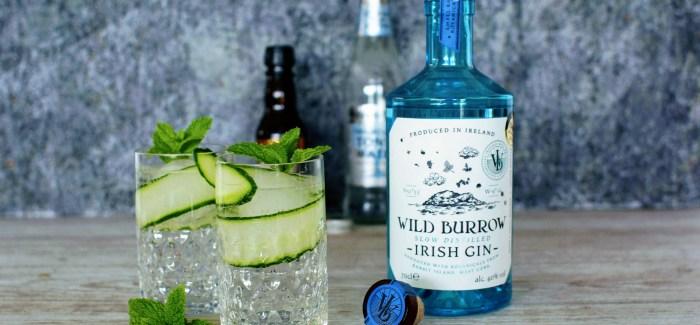 En gave til fars dag: Wild Burrow Irish Gin