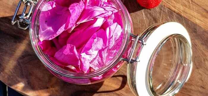 24 timers Rosé-gin – med kun 3 ingredienser
