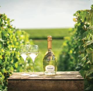 Gastromand x Champagne: Ruinart Blanc de Blancs – Wicked Game