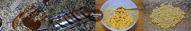 collage-placas-choco+arroz