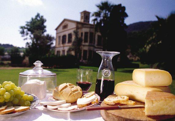Dialeg Taula formatge i vi Sant Patrici