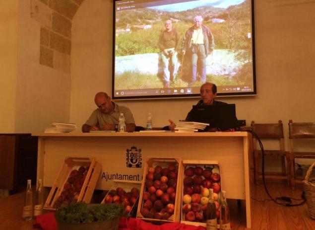 Un barranc hortalans i arrossers Adolf Sintes presentacio