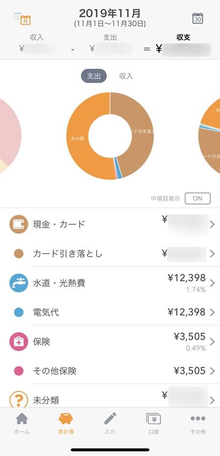 11月の支出
