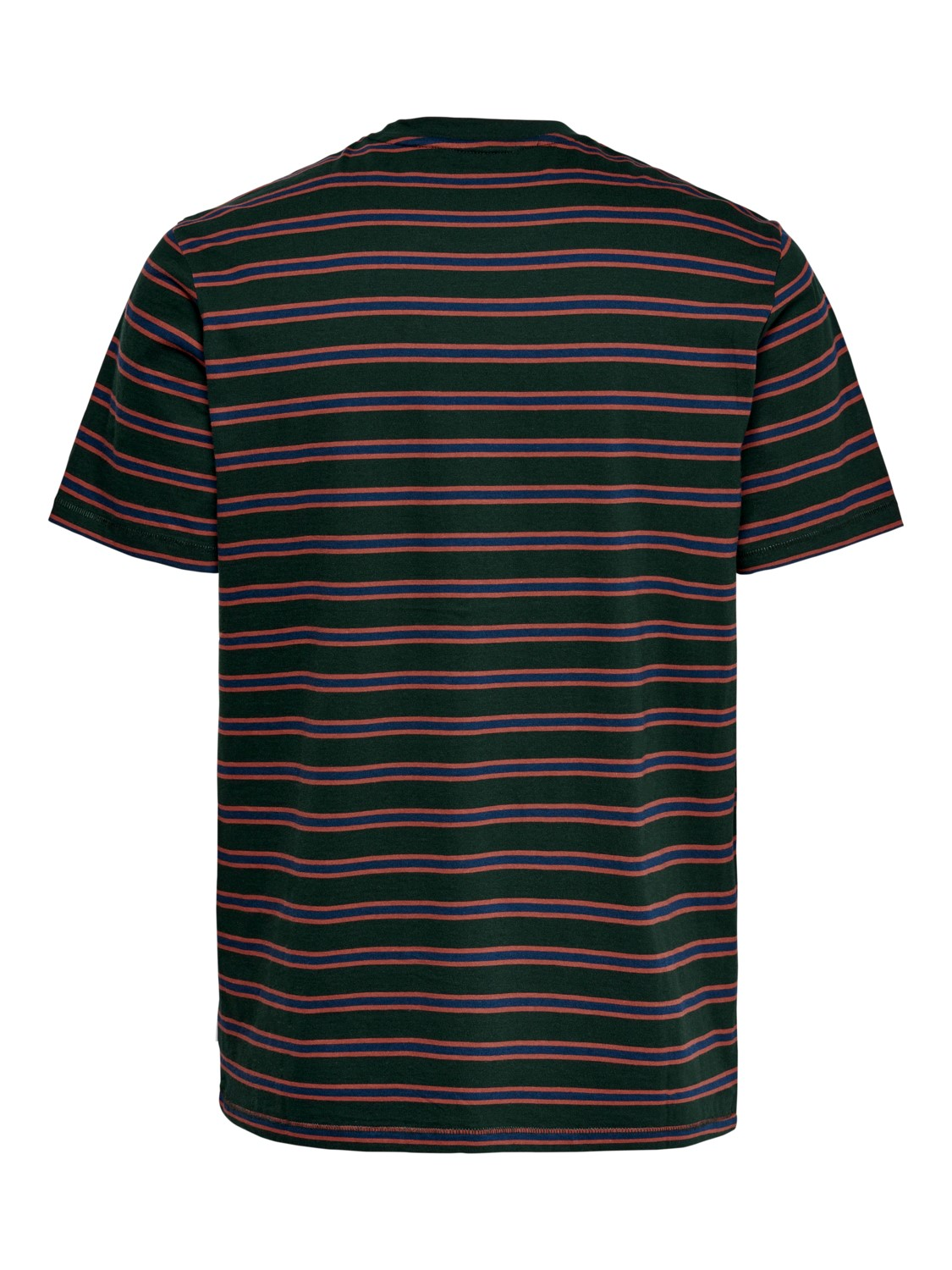 ONLY & SONS - ONSMEL LIFE TEE SCARAB | GATE36 Hobro