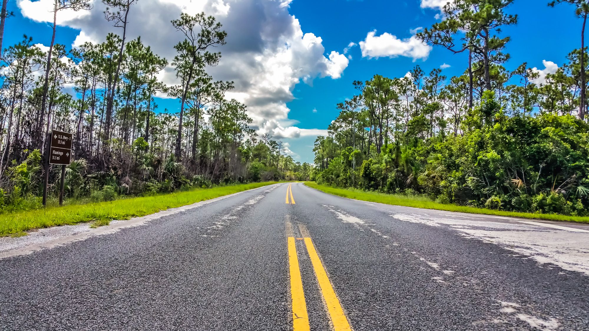 At the End of the Road – Flamingo, FL