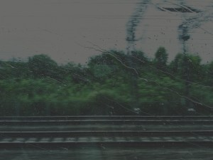 003 - 003