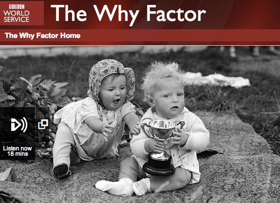 The Why Factor - Envy photo