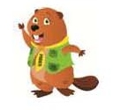Parka Beaver