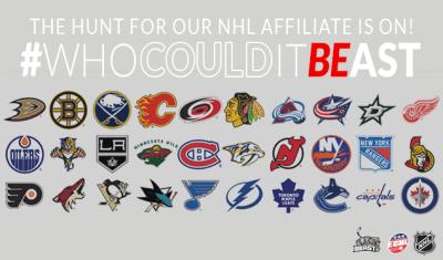 Beast NHL affiliate hunt