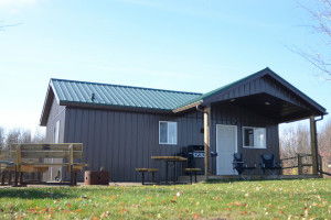 Cabins in Alberta's provincial parks are proving to be a popular option for campers