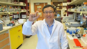 Hoon Sunwoo holds a sample of the antibody supplement he developed with colleague Jeong Sim. Sunwoo hopes the supplement, derived from chicken egg yolks, will soon improve quality of life for people with celiac disease.