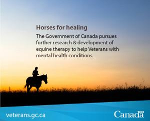 equine-therapy-e