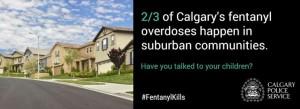 Calgary+Police+Service+Slide+3_e43d3bae-e19c-4135-9e19-3577c0825668-prv