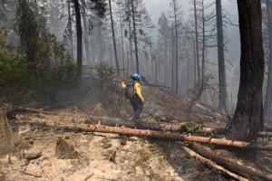 Waterton Lake Fire fighter