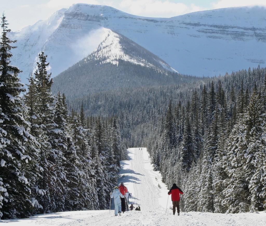 Cameron Ski Trail dm 2011 reduce