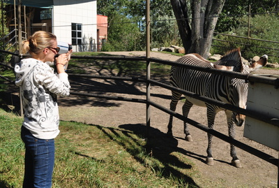 Anthropologist Amanda Melin measures the luminance of zebra stripes at the Calgary Zoo using an LS-110 Minolta Spot Photometer. Photo by Tim Caro, UC Davis