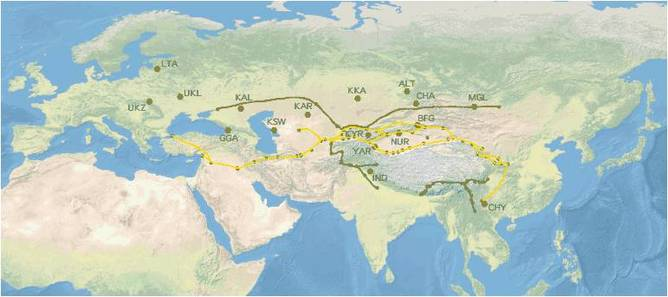 Silk Road trade routes and study populations. Vera Warmuth