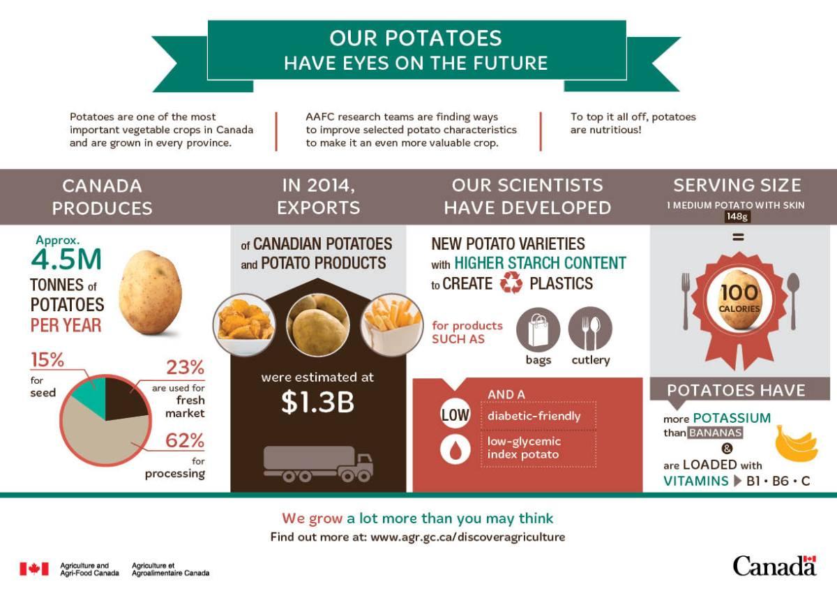 1452777696662_potato_patate_info-eng